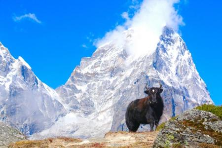 Nepal Tourism Year-2020- Challenges
