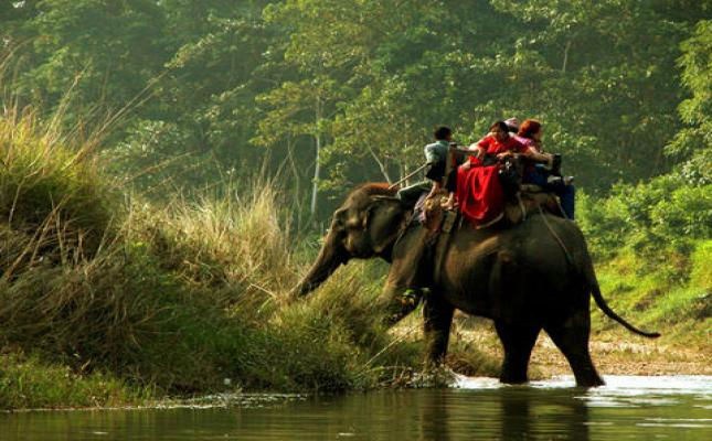 Chitwan Day Tour