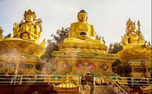 Kathmandu - Chitwan -Lumbini Tour - 7 days