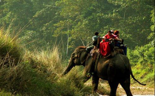 Kathmandu- Chitwan Tour- 6 days